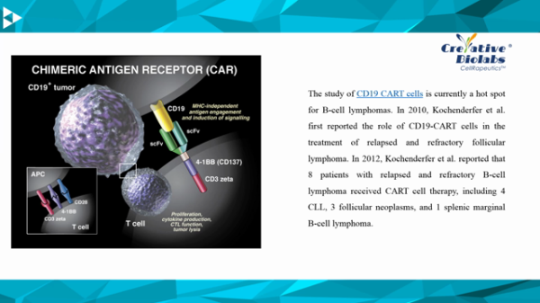 leukaemia car-t immunotherapy