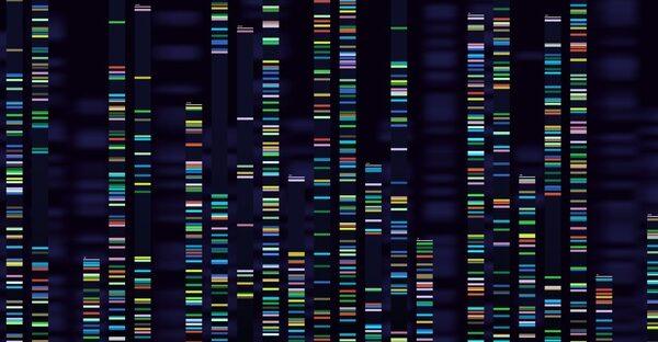 γονίδια μεταλλάξεις πολυκυτταραιμία