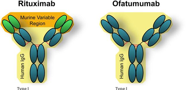 rituximab αντισώματα λεμφώματα